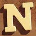Medinė raidė N