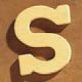 Medinė raidė S