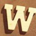 Medinė raidė W