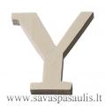 """Medinė raidė """"Y"""""""